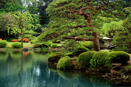 El estilo zen dentro de su hogar - Equilibrio en japones ...