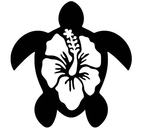 Tortuga Surf