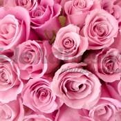 Estilo floral campestre