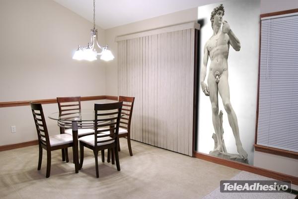 http://www.teleadhesivo.com/es/fotomurales/producto/arte-clasico-313/david-2-12339